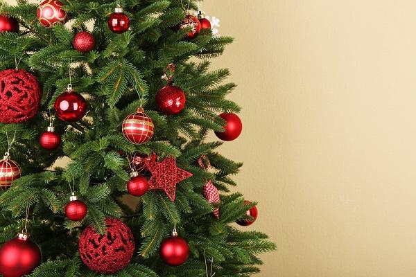 Foto Alberi Di Natale In Casa.Alberi Di Natale Olgiate Comasco E Gallarate Tagoo